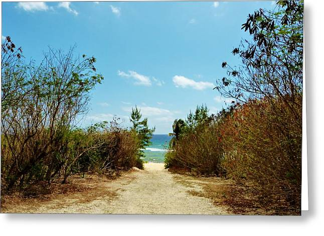 Greeting Card featuring the photograph Moon Bay Walk by Amar Sheow