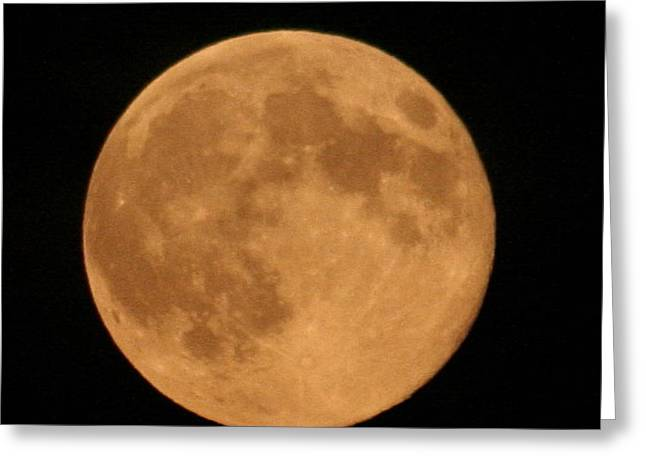 Moon Closeup Greeting Card by Carolyn Reinhart