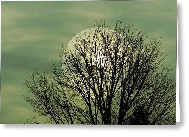 Moon Glow Greeting Card by Patricia Strand