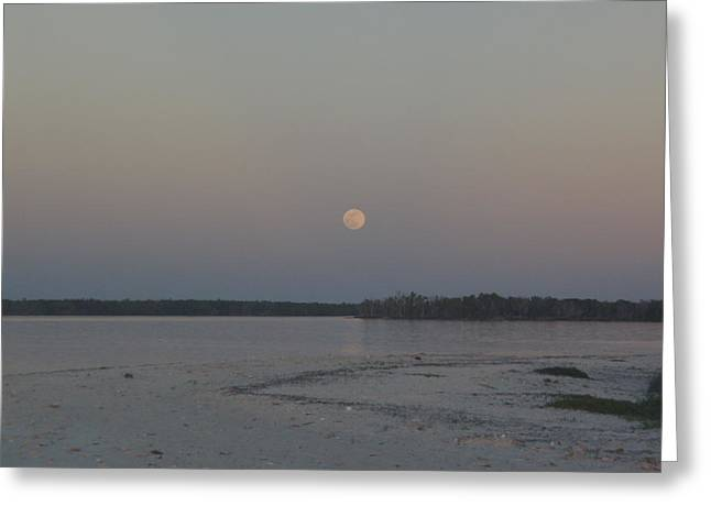 Moon Haze Greeting Card by Robert Nickologianis