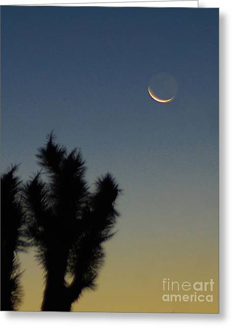 Greeting Card featuring the photograph Moon Kissed by Angela J Wright