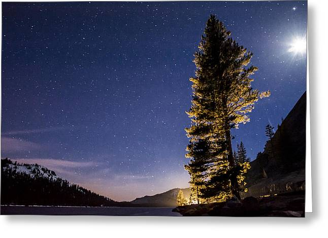 Moon Light Over Tenaya Lake Greeting Card by Cat Connor