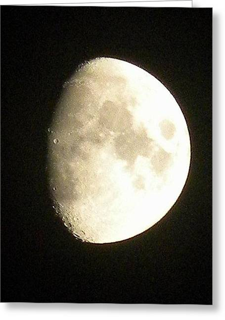 Moon Lit Night Greeting Card
