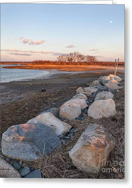 Moon Over Grays Beach Cape Cod Greeting Card by Michelle Wiarda