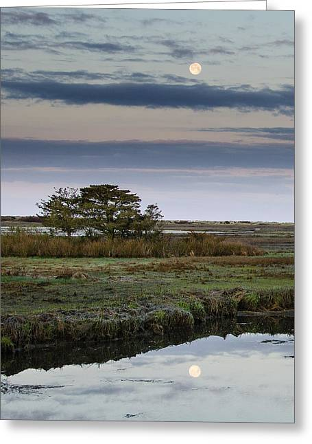 Moon Over Marsh Greeting Card