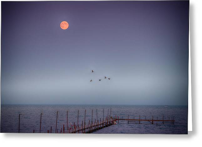 Moon Over Milacs Greeting Card by Paul Freidlund