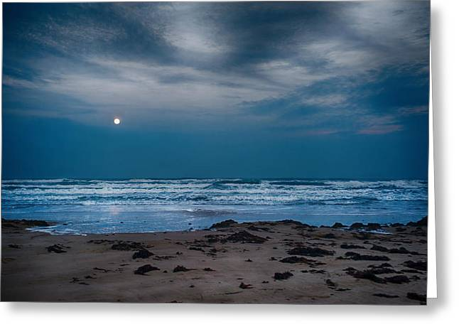 Moon Over The Gulf Greeting Card by Tammy Smith