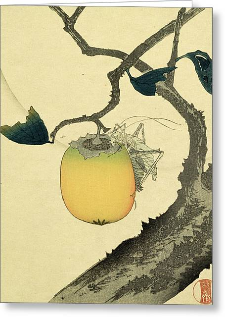 Moon Persimmon And Grasshopper Greeting Card