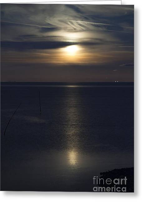 Moon Rise Greeting Card by Anne Gilbert