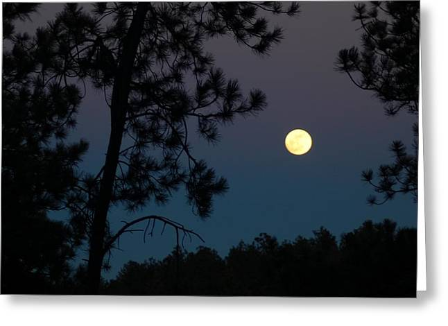 Moon Rise In Twilight Greeting Card