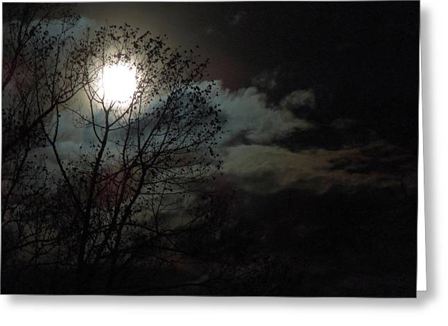 Moon Rise Greeting Card by Pete Trenholm