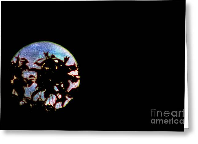 Greeting Card featuring the photograph Moon Rising by Leslie Hunziker