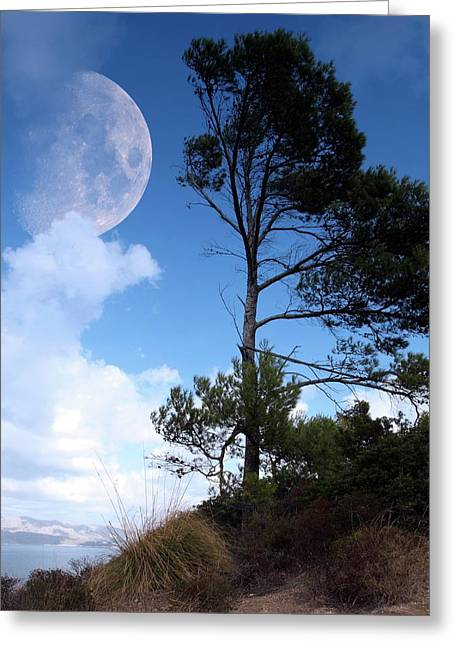 Moon Rising Over An Island Greeting Card by Detlev Van Ravenswaay