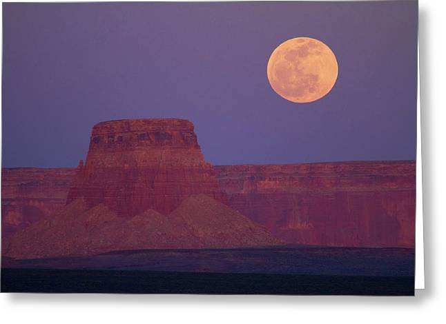 Moon Rising Over Tower Butte Greeting Card by David Wall