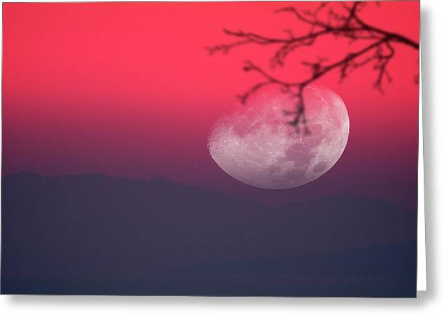 Moon Setting Behind Mountains Greeting Card by Detlev Van Ravenswaay