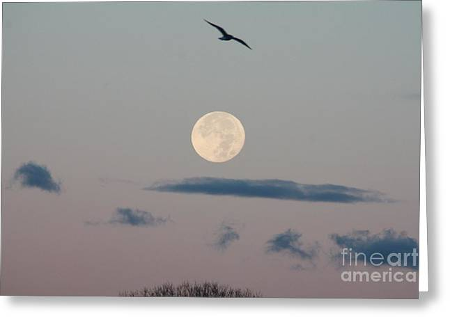 Moon Setting Over Oceanside Greeting Card
