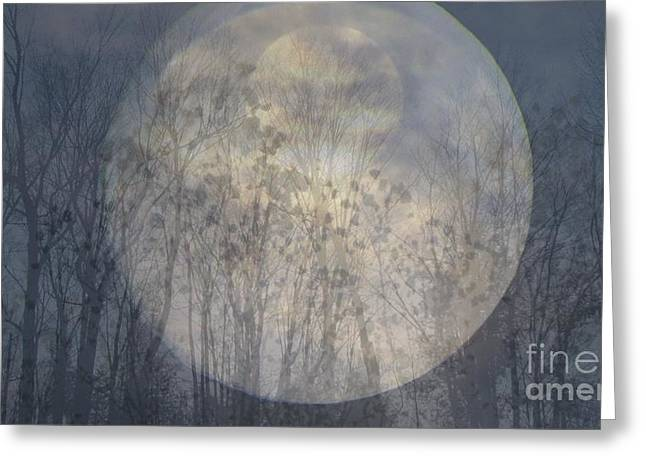Greeting Card featuring the photograph Moon Shadow by France Laliberte