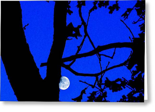 Greeting Card featuring the photograph Moon Through Trees 2 by Janette Boyd