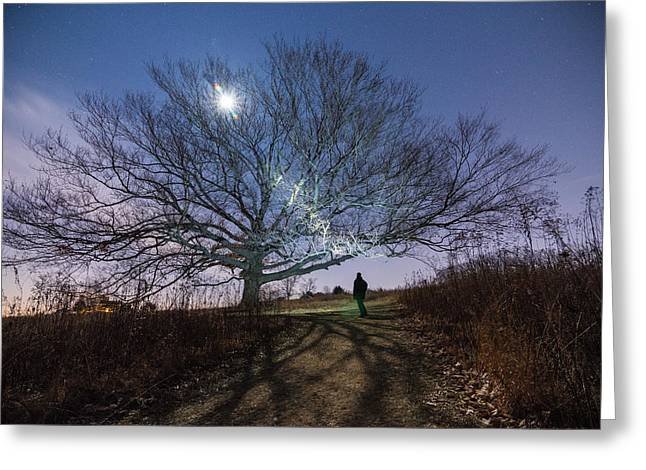 Moon Tree Greeting Card by Kristopher Schoenleber
