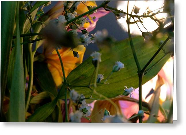 Moonlight Flowers Greeting Card by Susan Townsend