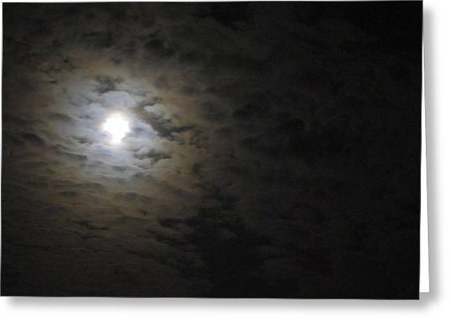 Greeting Card featuring the photograph Moonlight by Marilyn Wilson