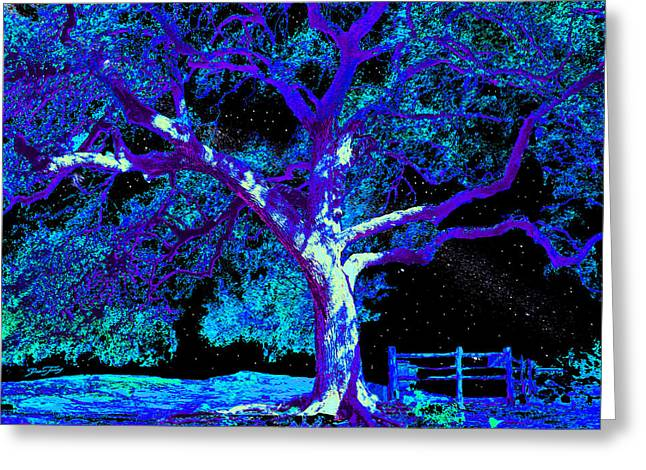 Moonlight Oak Greeting Card by Dan Terry