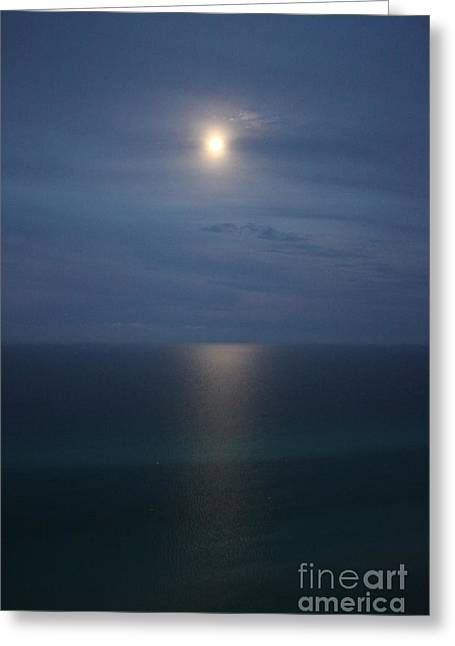 Moonlight Serenading The Waters Of Florida Greeting Card
