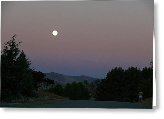 Moonlight Stroll Greeting Card by Jacquelyn Roberts