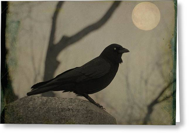 Aged Moonlit Night Crow Greeting Card by Gothicrow Images