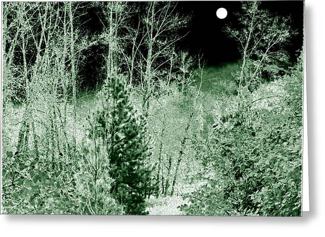 Moonlit Frosty Night Greeting Card by Will Borden