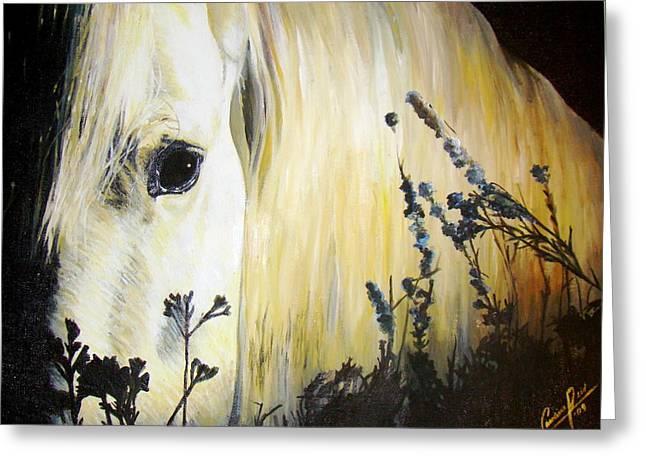 Moonlit Horse Greeting Card by Caroline  Reid