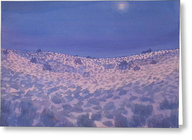 Moonlit Winter Desert Greeting Card