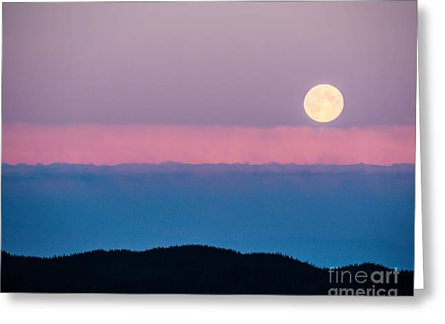 Moonrise Greeting Card by Christina Klausen
