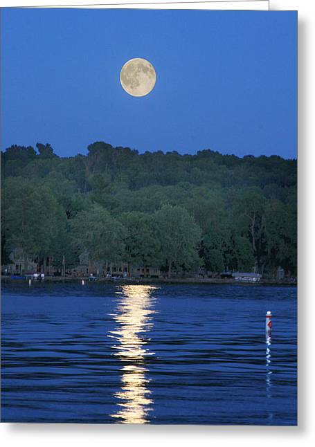 Reflections Of Luna Greeting Card by Richard Engelbrecht