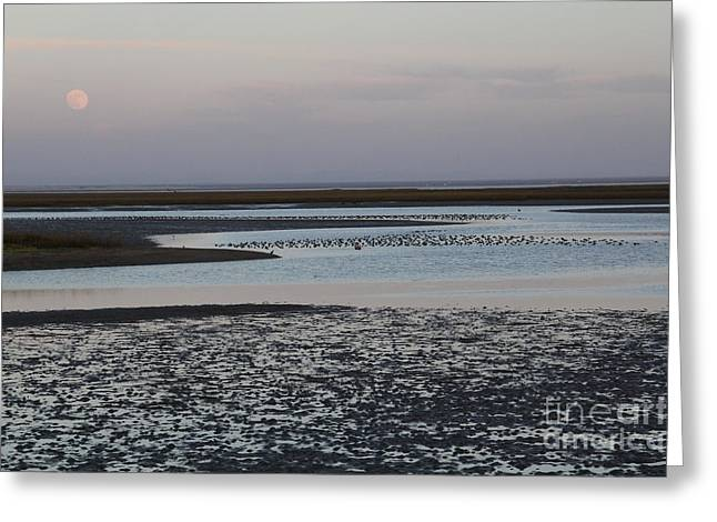Moonrise Over Guerrero Negro Greeting Card
