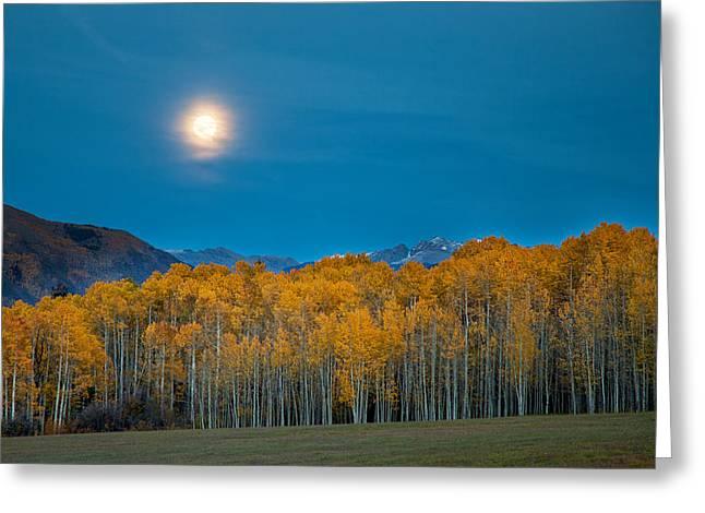 Moonrise Greeting Card by Tom Cuccio