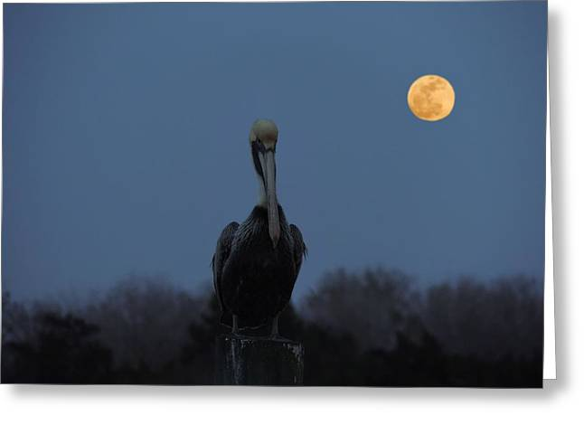 Greeting Card featuring the photograph Moon's Up by Laura Ragland