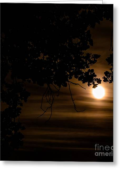 Moonscape Greeting Card by Optical Playground By MP Ray