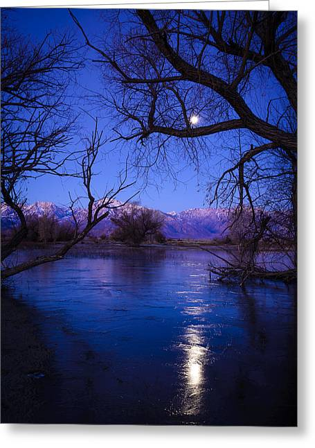 Moonset On Farmers Pond Greeting Card by Joe Doherty
