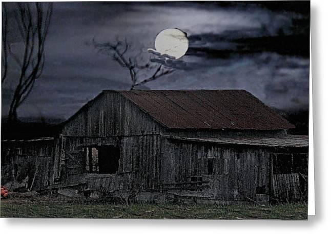 Moonshine Nights Greeting Card