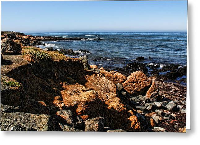 Moonstone Beach Greeting Card by Judy Vincent