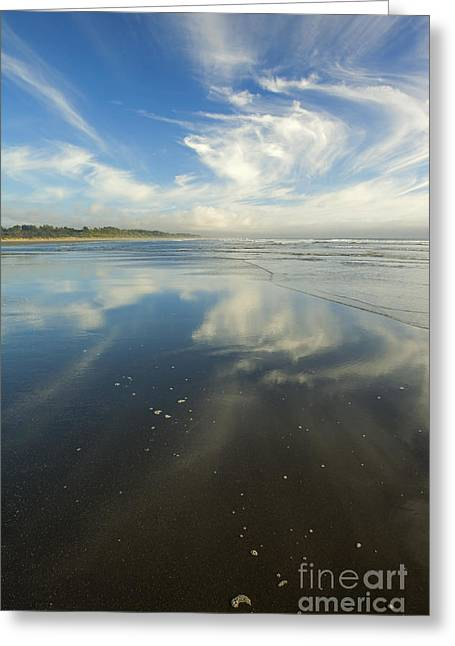 Moonstone Beach Reflections Greeting Card by Mike  Dawson