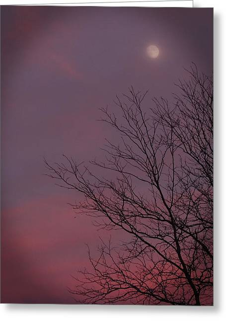 Moonstruck Greeting Card