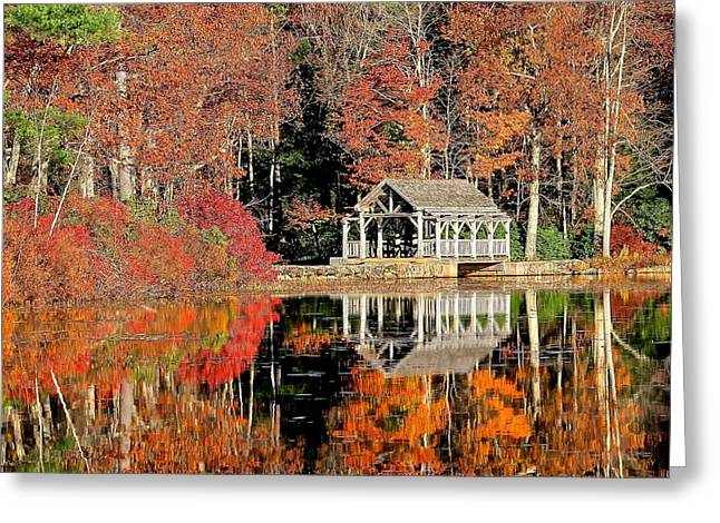 Moore State Park Autumn II Greeting Card