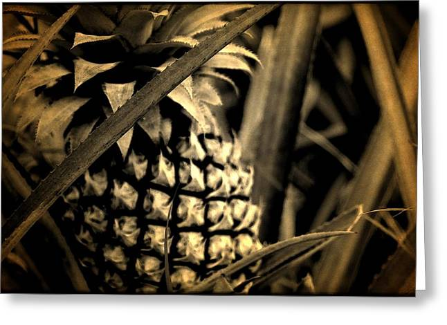 Moorea Pineapple Greeting Card