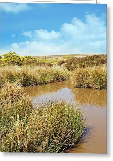 Moorland Pond Greeting Card