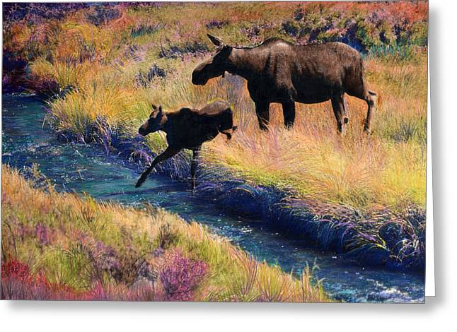 Moose And Calf Greeting Card by Cindy McIntyre