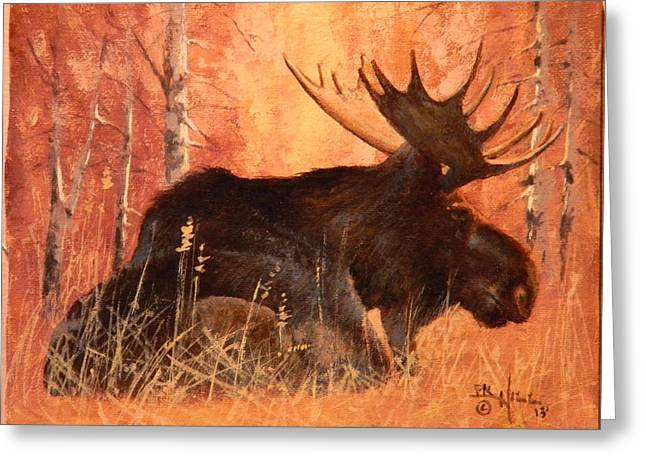 Moose At Rest Greeting Card