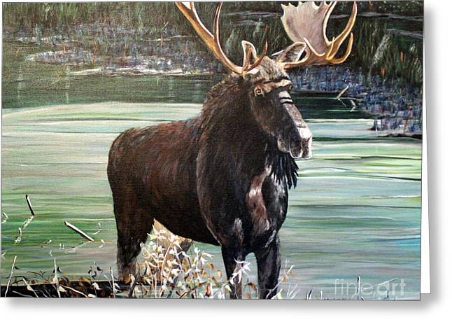 Moose County Greeting Card