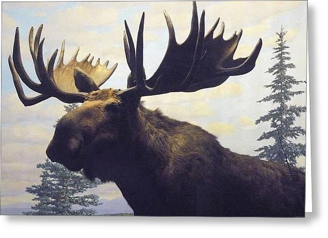 Moose Diorama Greeting Card